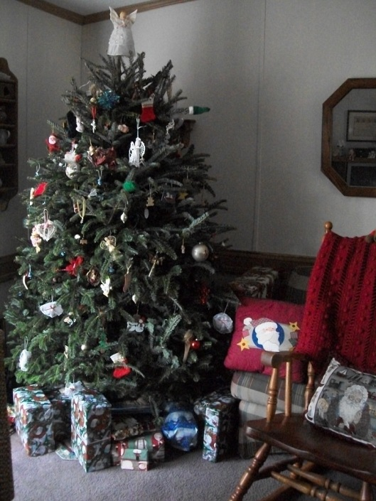 Our Tree, 2012